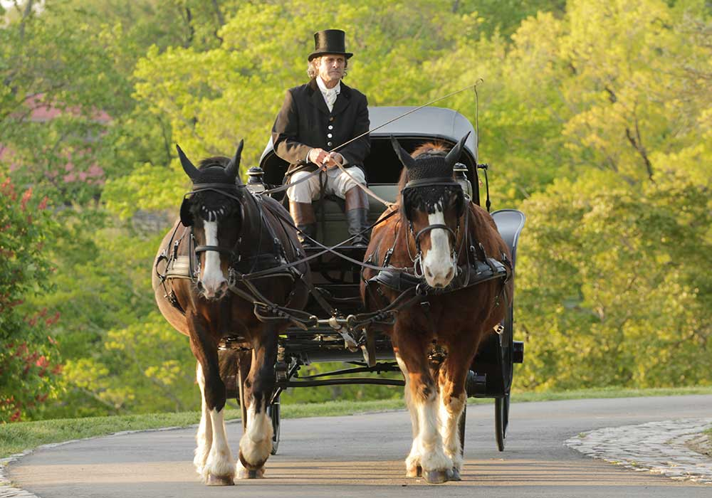 Carriage Collection at Maymont c Jay Paul