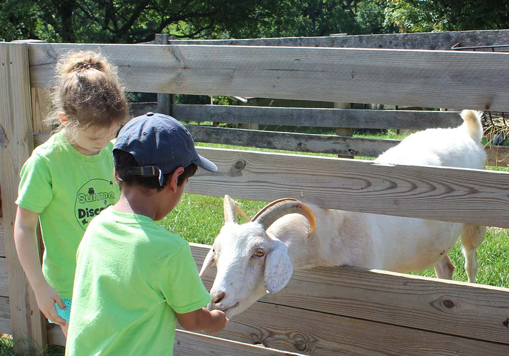Summer Camps at Maymont